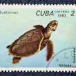 Postage stamp with the image of a turtle. — Stock Photo