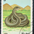 Stock Photo: Postage stamp with image of snake.