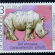 Postage stamp with the image of a white rhino. — Stockfoto