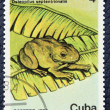 Stock Photo: Postage stamp with image of frog