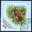 Postage stamp with the image of a piglet wild boar — Stockfoto