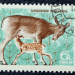 Postage stamp with the image of a deer — Stockfoto