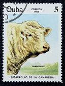 Estampilla con la imagen de una vaca — Foto de Stock