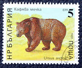 Postage stamp with the image of a brown bear — 图库照片