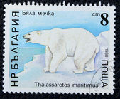 Postage stamp with the image of a big polar bear — Stok fotoğraf