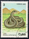 Postage stamp with the image of a snake. — Stock Photo
