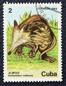 Postage stamp with the image of a echidna. — Stock Photo