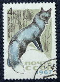 Postage stamp with the image of a fox — Stock Photo