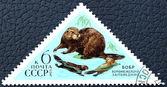 Kunduz görüntüsü ile posta pulu. — Stok fotoğraf