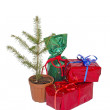Christmas tree and Christmas gifts — Stock Photo