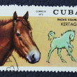 Stock Photo: Postage stamp with image of horse