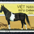 Postage stamp with the image of a horse - Stock Photo