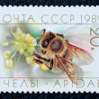 Postage stamp with the image of a bee — Stock Photo