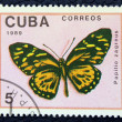 Postage stamp with the image of a butterfly — Zdjęcie stockowe
