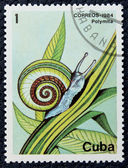 Postage stamp with the image of the snail. — Zdjęcie stockowe