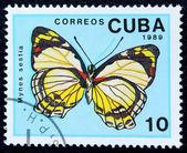 Briefmarke mit dem bild eines schmetterlings — Stockfoto