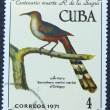 Postage stamp with the image of a bird — 图库照片