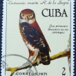 Postage stamp with the image of a owl — 图库照片