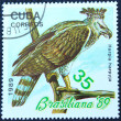 Стоковое фото: Postage stamp with image of bird