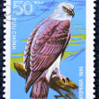 Postage stamp with the image of a predatory bird — Zdjęcie stockowe