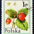 Stok fotoğraf: Postage stamp with image of wild strawberry