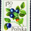 Stockfoto: Postage stamp with image of blueberries.