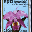 Postage stamp with the image of orchid flower. — Zdjęcie stockowe
