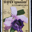 Postage stamp with the image of orchid flower. — 图库照片
