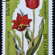 Postage stamp with the image of the tulips — Zdjęcie stockowe