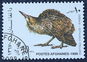Postage stamp with the image of a bird — Stock Photo