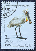 Postage stamp with the image of a heron — Stock Photo