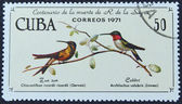 Postage stamp with the image of a colibri — Stock Photo