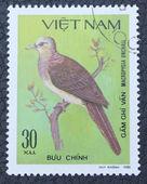 Poštovní známka s obrázkem ptáka — Stock fotografie