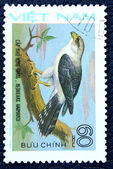 Postage stamp with the image of a predatory bird — Stock Photo