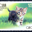 Postage stamp with the image of the kitten — Stock Photo