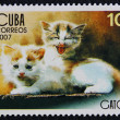 Postage stamp with the image of the kittens - Stock Photo