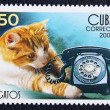Postage stamp with the image of the cat and telephone - Stock Photo