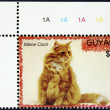 Postage stamp with the image of the cat - Stock Photo