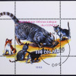 Postage stamp with the image the cat caught the mouse, and around sit the kittens — Stock Photo