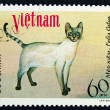 Stock Photo: Postage stamp with image cat