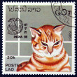 Postage stamp with image of cat — Stock Photo #19403603