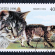 Postage stamp with the image of the cat — Stock Photo