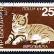 Postage stamp with image of cat — Stock Photo #19403749