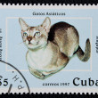 Stock Photo: Postage stamp with image of cat