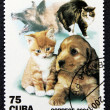 Postage stamp with the image of a cat and dog (puppy and kitten) — Stock Photo