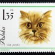Postage stamp with the image of a cat — Foto de Stock