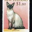 Postage stamp with the image of a cat Siamese breed — ストック写真