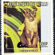 Postage stamp with the image of the cat — Стоковая фотография