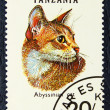 Stok fotoğraf: Postage stamp with image of cat abyssinibreed.