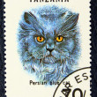 Stok fotoğraf: Postage stamp with image of cat blue persibreed.